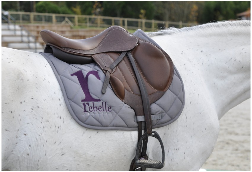 Blog rebelle sellier - Cheval rebelle ...